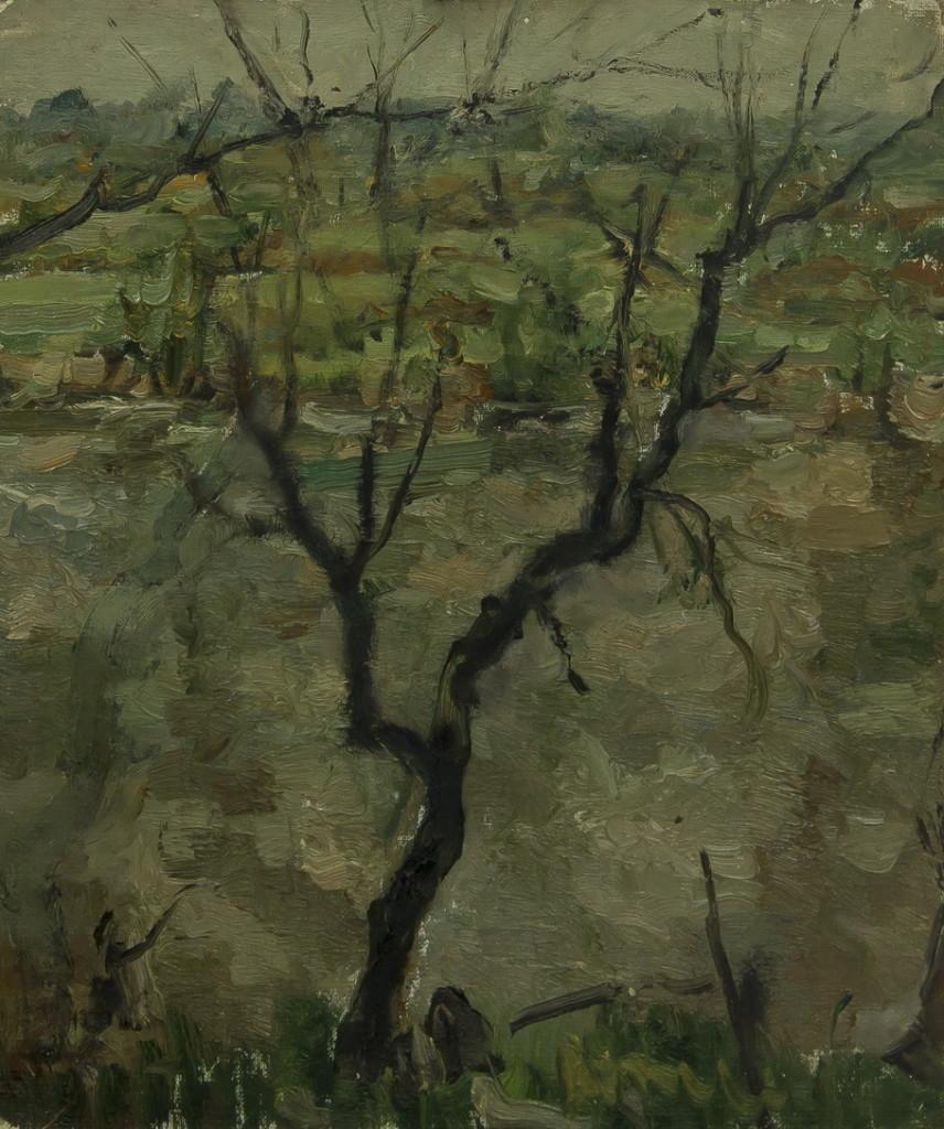 """Шистер Абрам: """"Дерево"""""""